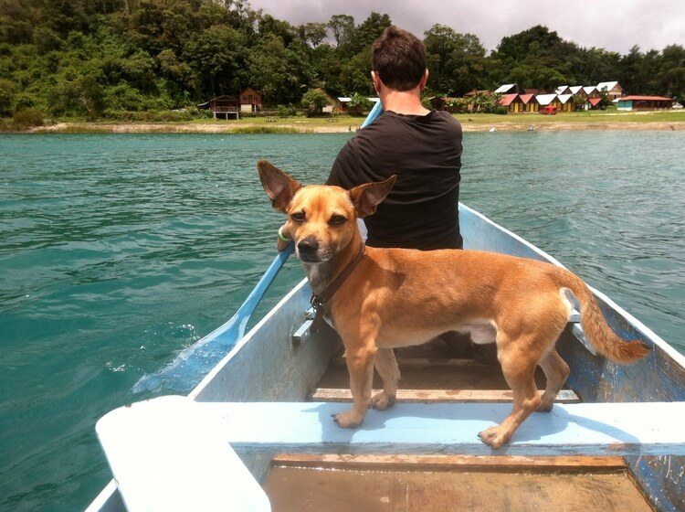 Brando on adventure- standing as a captain